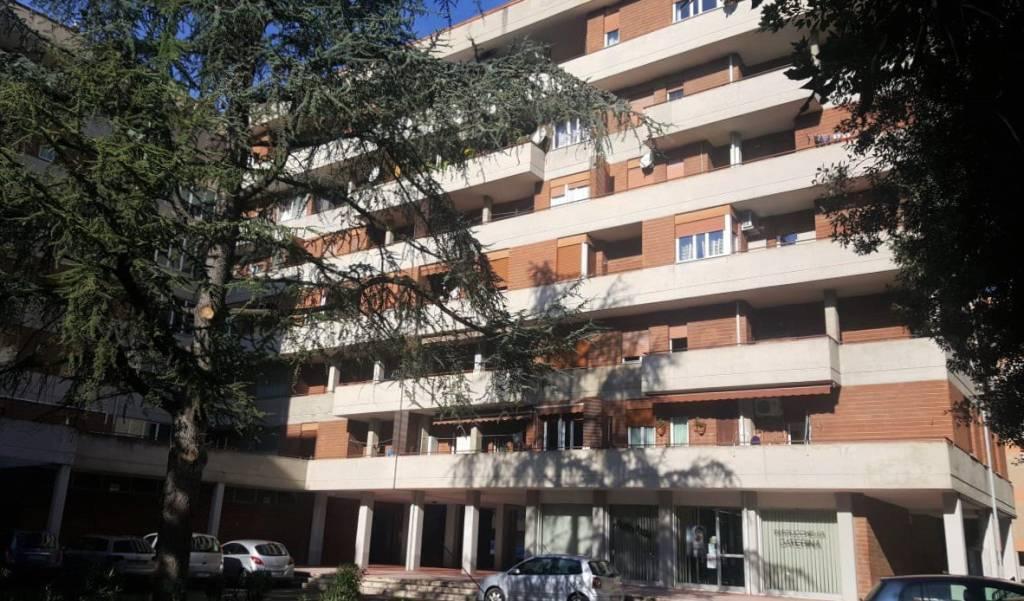 Appartamento in buone condizioni parzialmente arredato in vendita Rif. 8563685