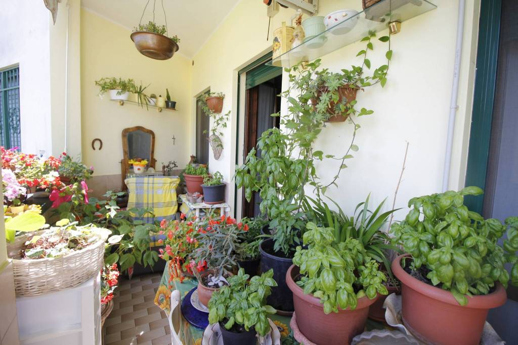 Appartamento in ottime condizioni in vendita Rif. 8609169