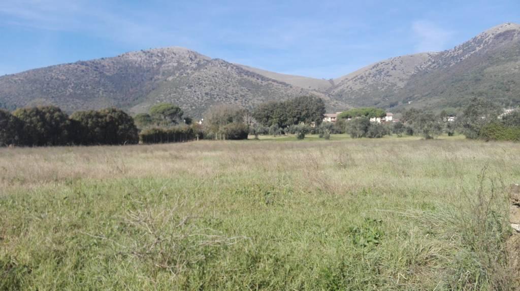 Terreno Agricolo in vendita a Piana di Monte Verna, 9999 locali, prezzo € 65.000 | CambioCasa.it