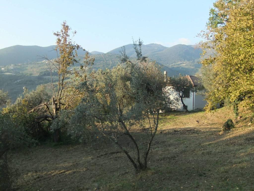 Villa bilivelli 180 mq panoramica con 7000 mq di uliveto