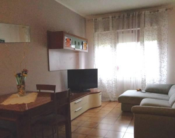 Appartamento in buone condizioni arredato in affitto Rif. 8619814