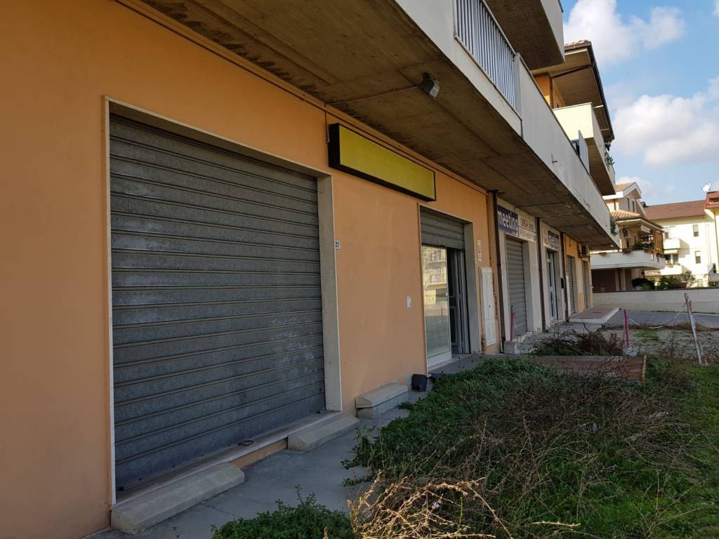 Locale commerciale doppi servizi e ampio cortile privato Rif. 8664958