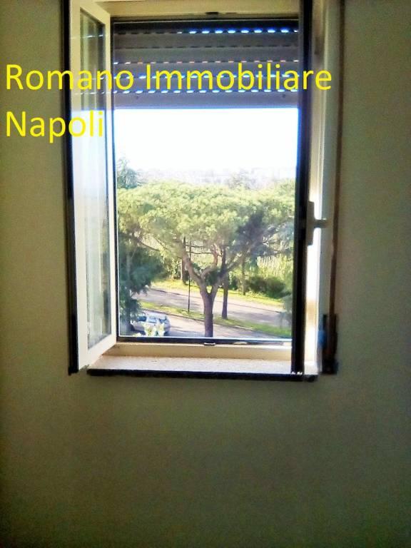 Appartamento in ottime condizioni in affitto Rif. 8593446