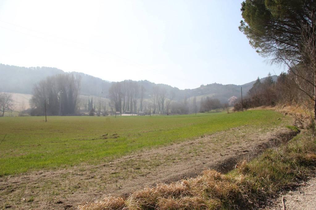 Terreno Agricolo in vendita a Spoleto, 9999 locali, prezzo € 42.000   PortaleAgenzieImmobiliari.it