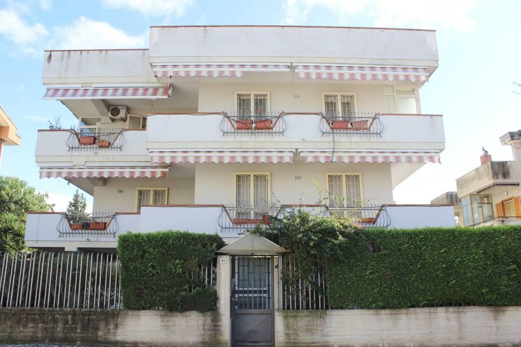 Appartamento in ottime condizioni in affitto Rif. 8777035