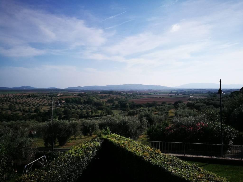 Vendesi appartamento - Magliano in Toscana