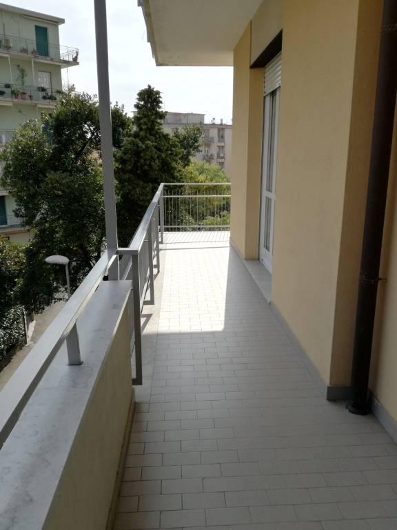 Appartamento in ottime condizioni arredato in affitto Rif. 8795208
