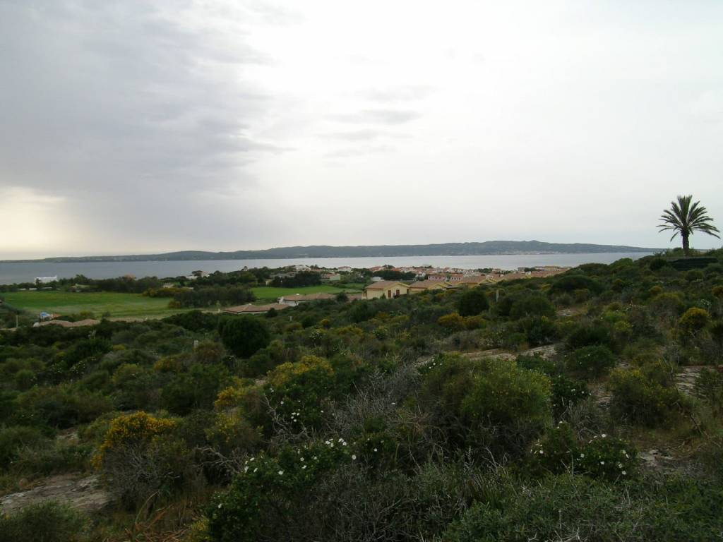 Terreno edificabile panoramico su Carloforte