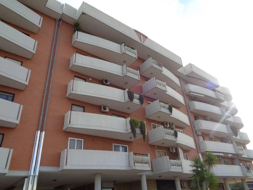 Appartamento in ottime condizioni in affitto Rif. 8815353