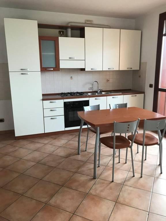 Appartamento in buone condizioni arredato in affitto Rif. 8846109
