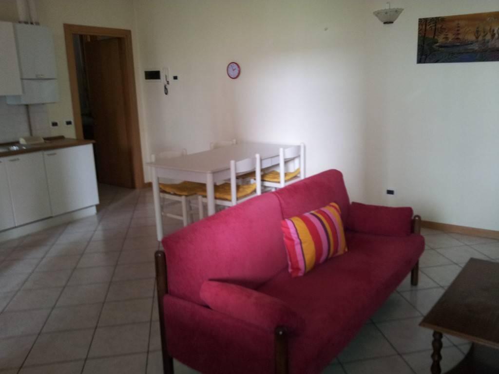 Appartamento in ottime condizioni arredato in affitto Rif. 8848212