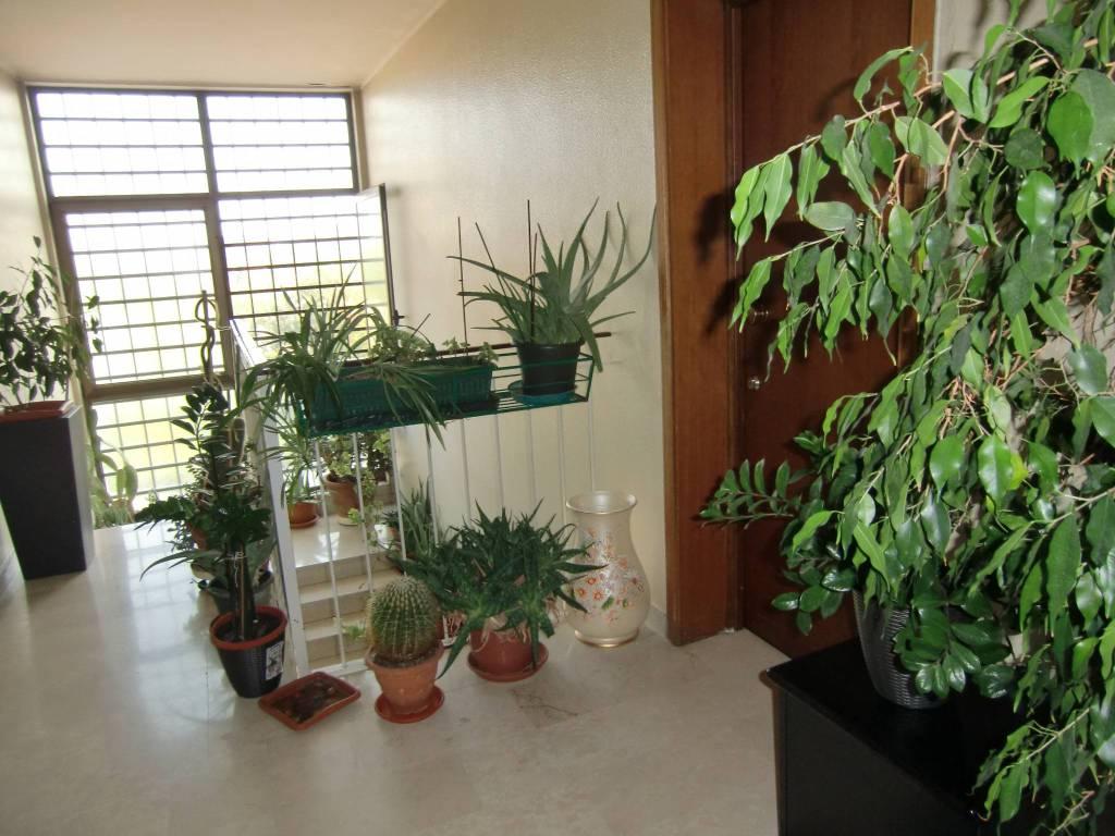 Appartamento in buone condizioni in vendita Rif. 8884945