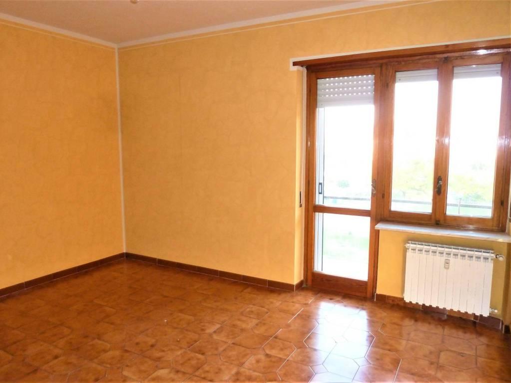 Appartamento in buone condizioni in affitto Rif. 8909252