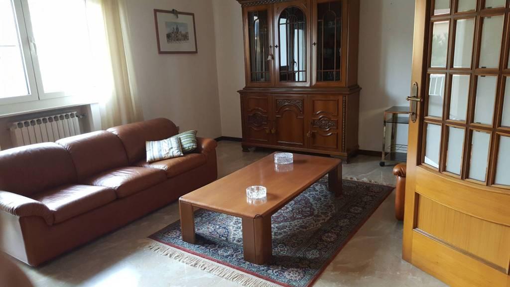 Appartamento in buone condizioni arredato in affitto Rif. 8912591