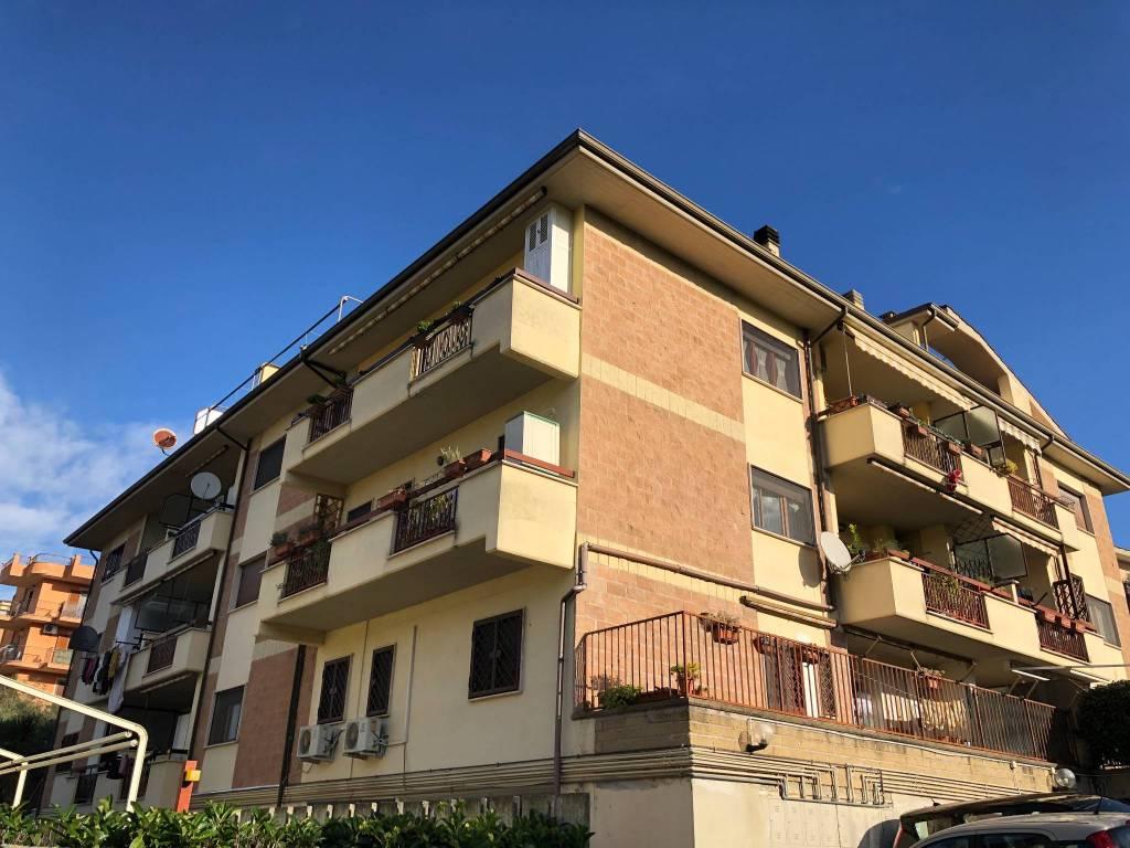Appartamento in buone condizioni arredato in affitto Rif. 8926881