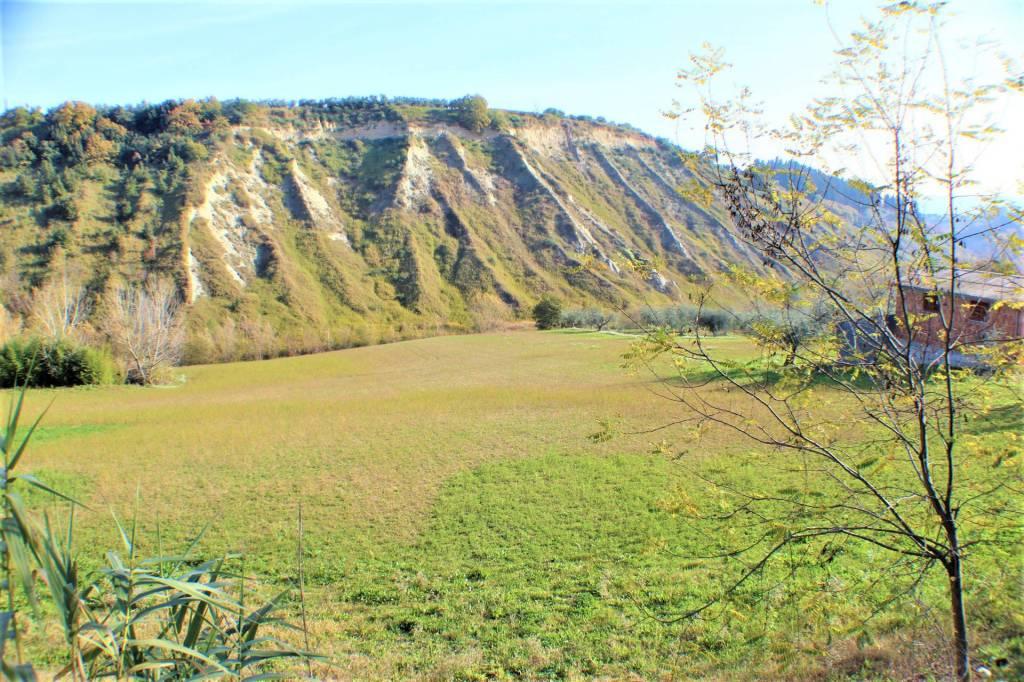 Terreno agricolo con rimessa attrezzi Rif. 8923995