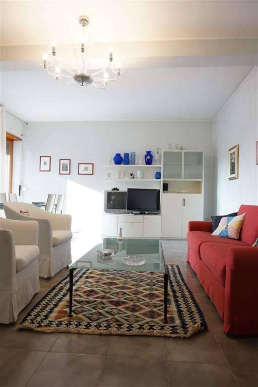 Appartamento in ottime condizioni arredato in affitto Rif. 8972565