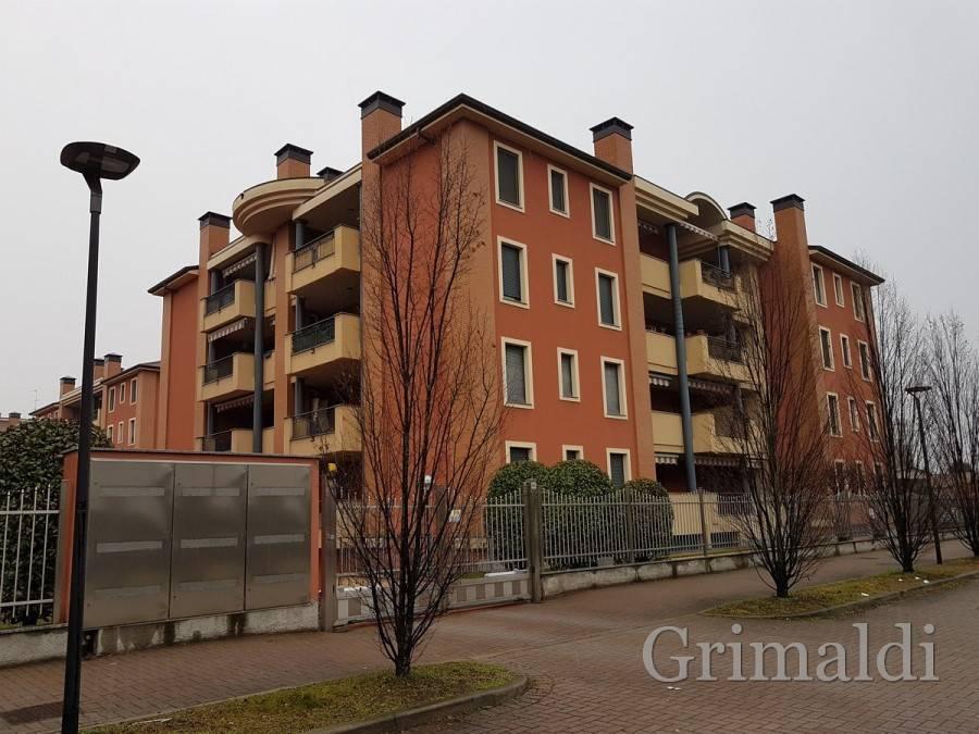 Appartamento in ottime condizioni in affitto Rif. 8998024