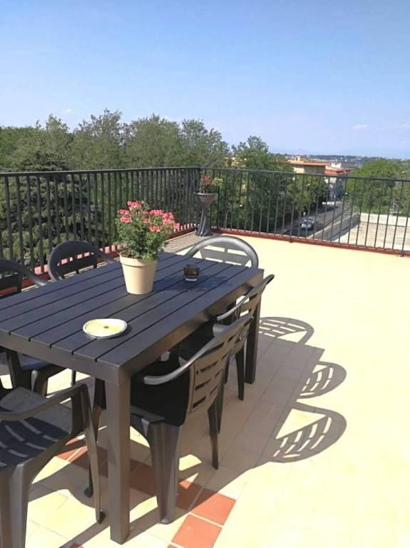 Appartamento in ottime condizioni in affitto Rif. 7809427