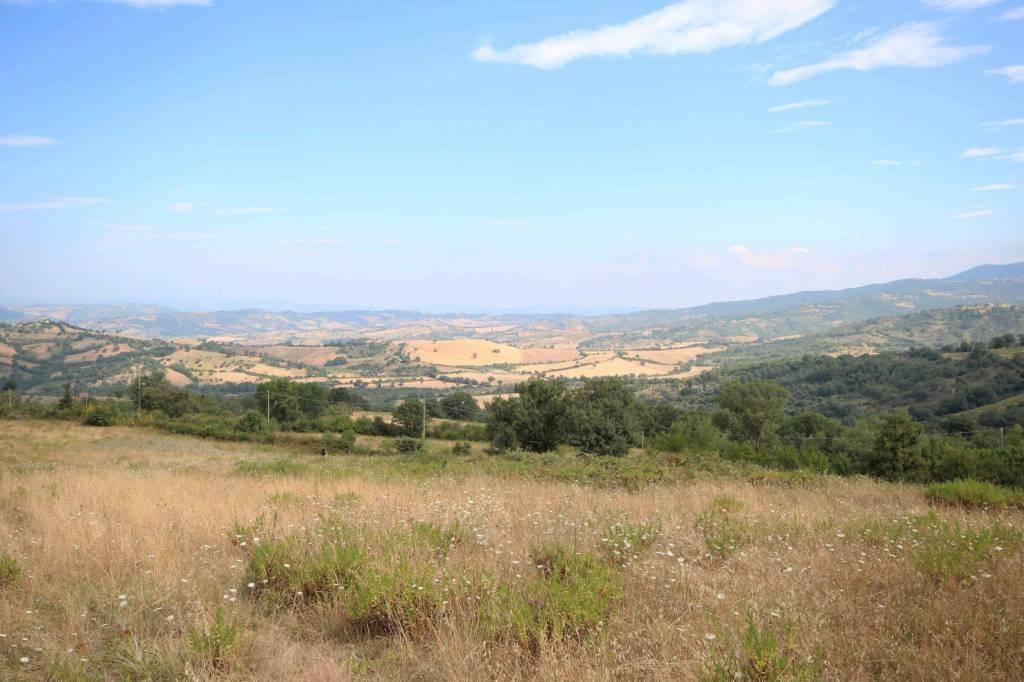 Azienda agricola in collina nella bellissima campagna grosse Rif. 7473023