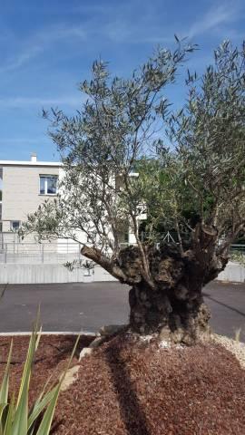 Villa 6 locali in vendita a Pordenone (PN)