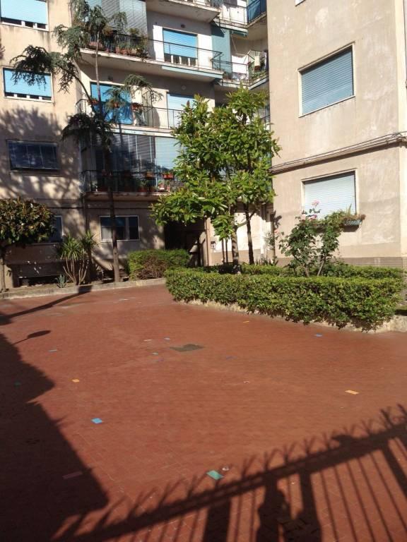 Appartamento in buone condizioni in affitto Rif. 9053873