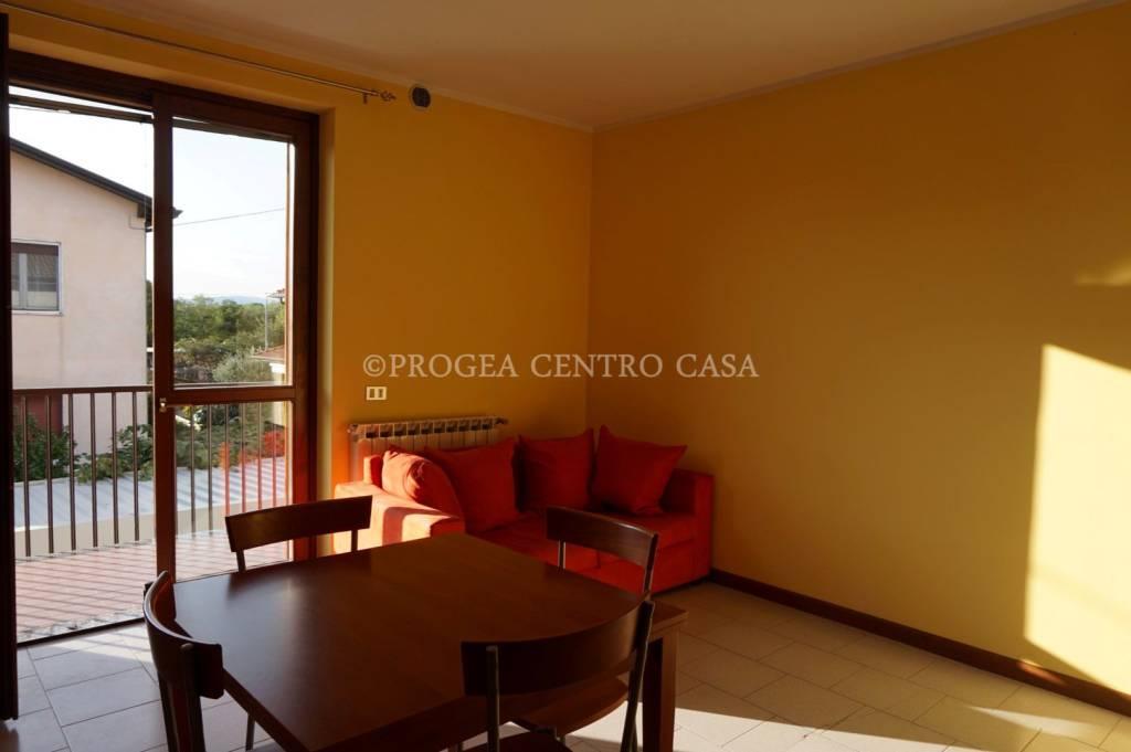 Appartamento in ottime condizioni arredato in affitto Rif. 9141796