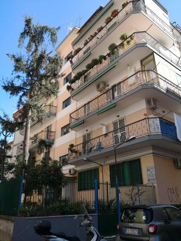 Appartamento in ottime condizioni in affitto Rif. 9099267