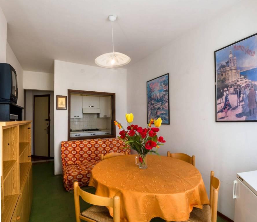 Appartamento in buone condizioni arredato in affitto Rif. 9116779