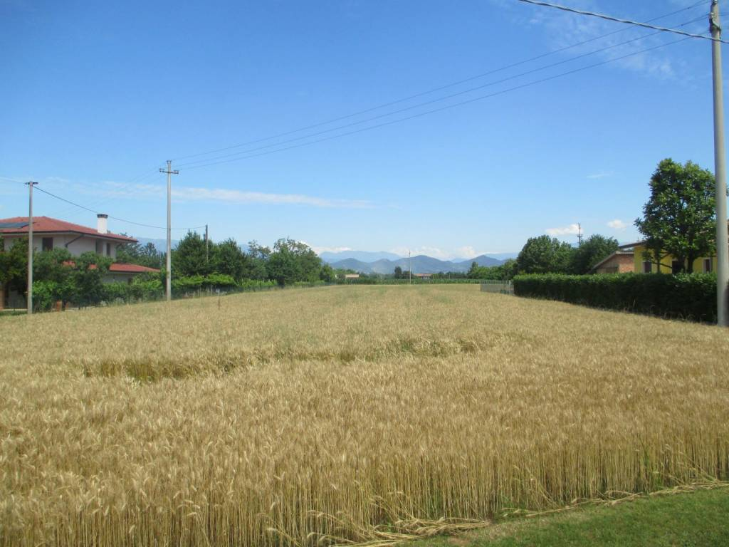 Terreno Agricolo in vendita a Altivole, 9999 locali, prezzo € 60.000 | CambioCasa.it