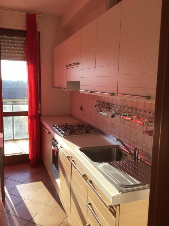 Appartamento in buone condizioni parzialmente arredato in affitto Rif. 9256888