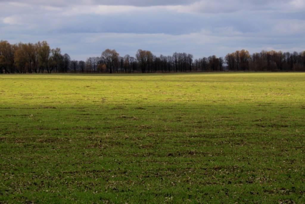 Terreno agricolo in vendita a Brugnera (PN)