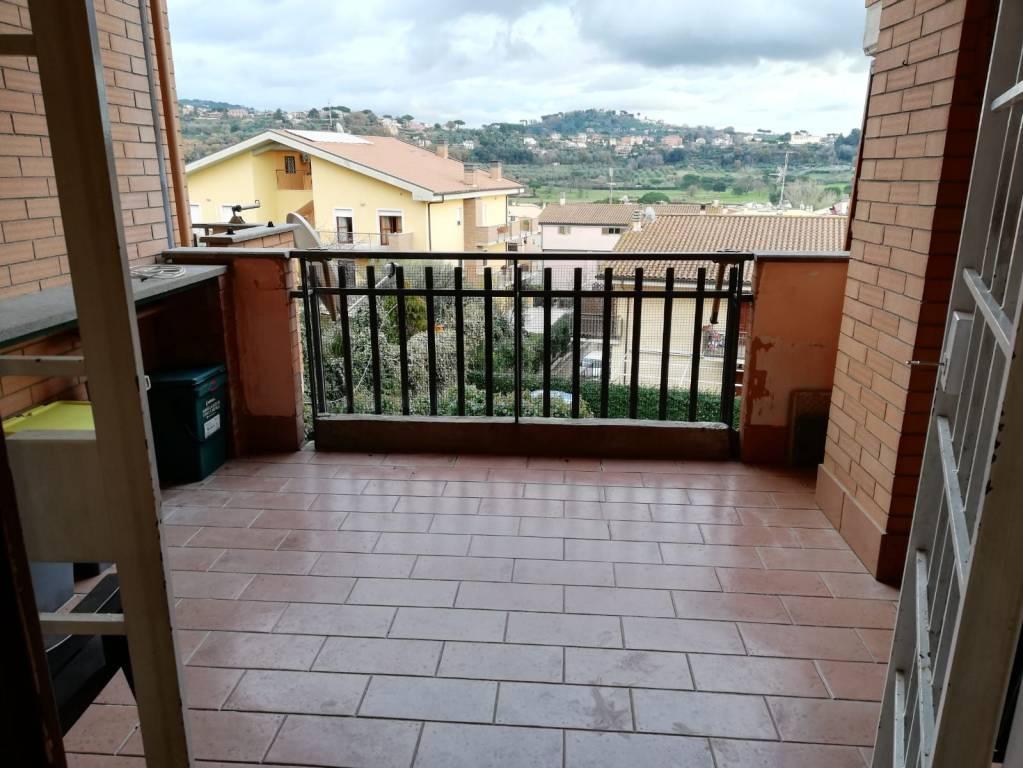 Appartamento in buone condizioni arredato in affitto Rif. 9258889