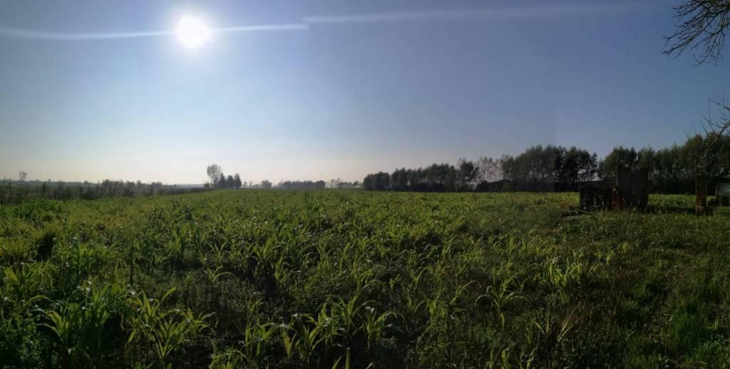 Terreno Agricolo in vendita a Campagna Lupia, 9999 locali, prezzo € 110.000 | CambioCasa.it