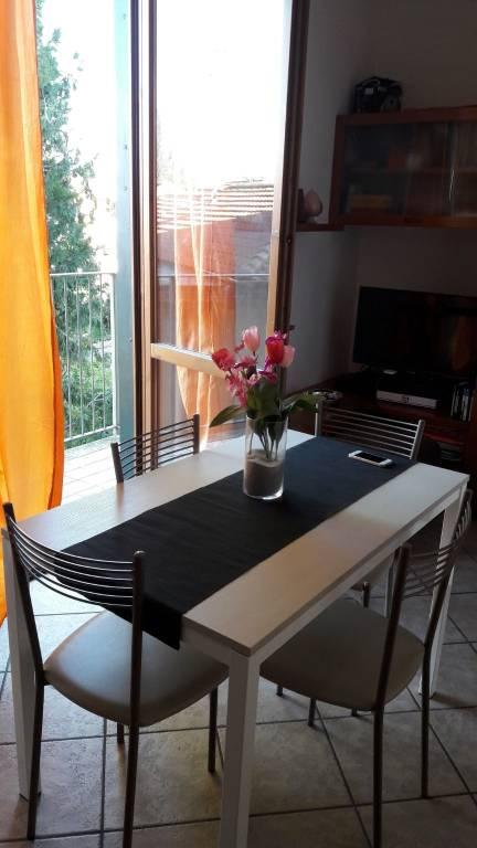 Appartamento in ottime condizioni arredato in affitto Rif. 9318480