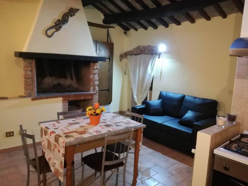 Appartamento in ottime condizioni arredato in affitto Rif. 8411465