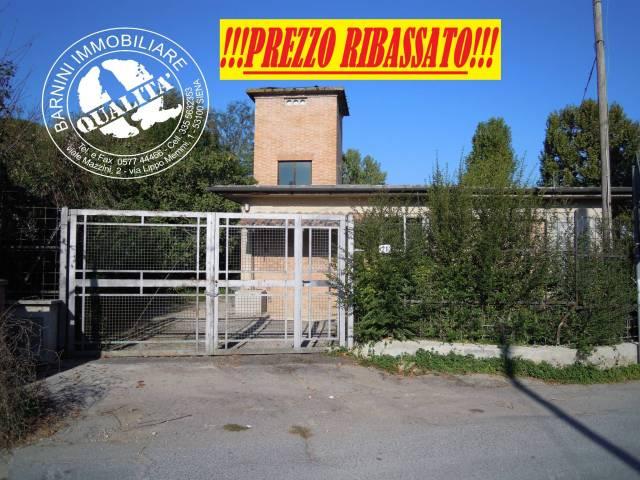 """Siena Locale Indipendente """"ESCLUSIVA"""" Rif. 5307159"""