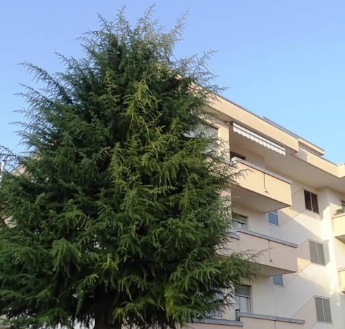 Attico / Mansarda in vendita a Cuorgnè, 8 locali, prezzo € 129.000 | PortaleAgenzieImmobiliari.it