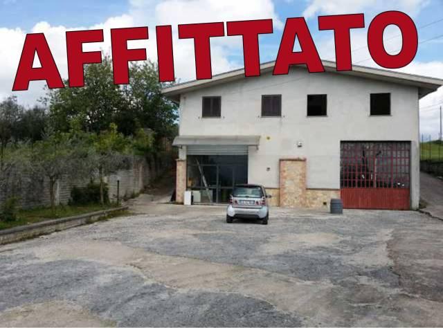Attività commerciale in affitto Rif. 6738540