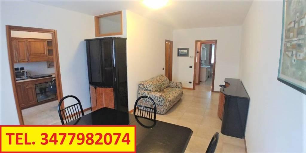 Appartamento in buone condizioni arredato in affitto Rif. 9240481
