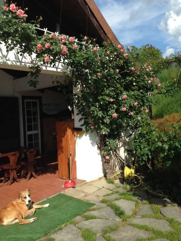 Villa in vendita a San Raffaele Cimena, 6 locali, prezzo € 280.000   PortaleAgenzieImmobiliari.it
