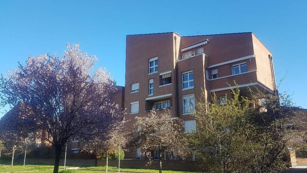 Appartamento in Affitto a Casalecchio Di Reno Semicentro: 4 locali, 90 mq