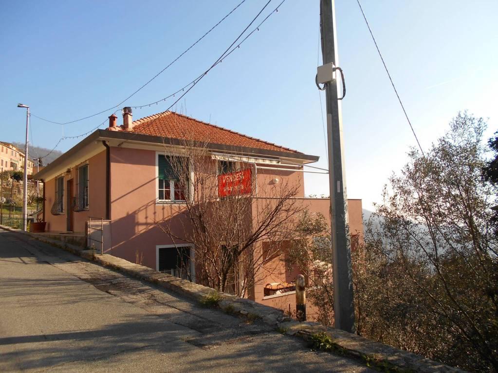 Foto 1 di Appartamento Frazione Canepa, Sori