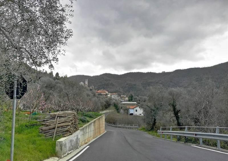 Terreno Edificabile Residenziale in vendita a Villanova d'Albenga, 9999 locali, prezzo € 40.000 | PortaleAgenzieImmobiliari.it