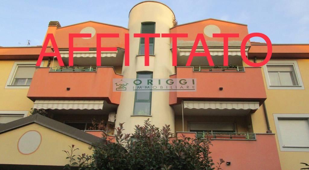 Appartamento in buone condizioni arredato in affitto Rif. 8834112
