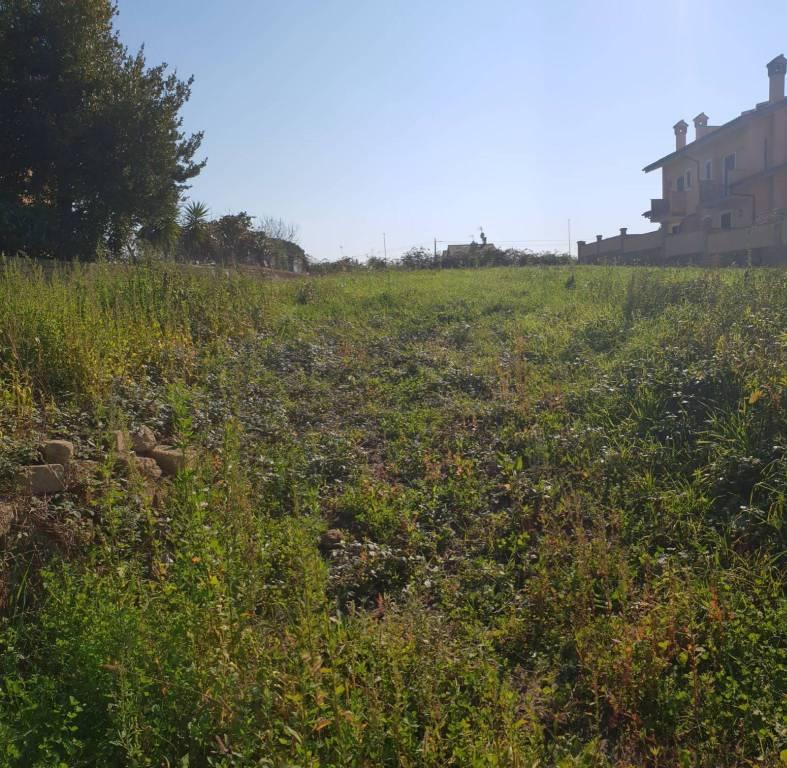Terreno Edificabile Residenziale in vendita a Roma, 9999 locali, zona Zona: 41 . Castel di Guido - Casalotti - Valle Santa, prezzo € 110.000   CambioCasa.it