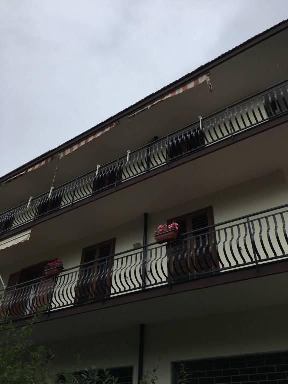 Appartamento in ottime condizioni arredato in affitto Rif. 8336386