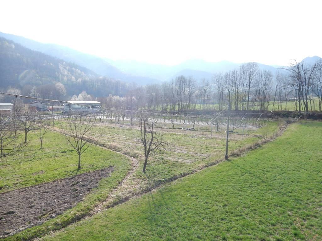 Foto 1 di Villa via Valle Ellero, Roccaforte Mondovì