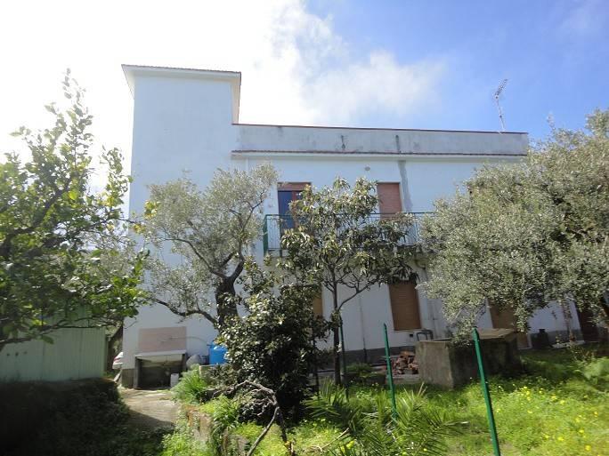 Appartamento in vendita a Gioiosa Marea, 5 locali, prezzo € 108.000   PortaleAgenzieImmobiliari.it
