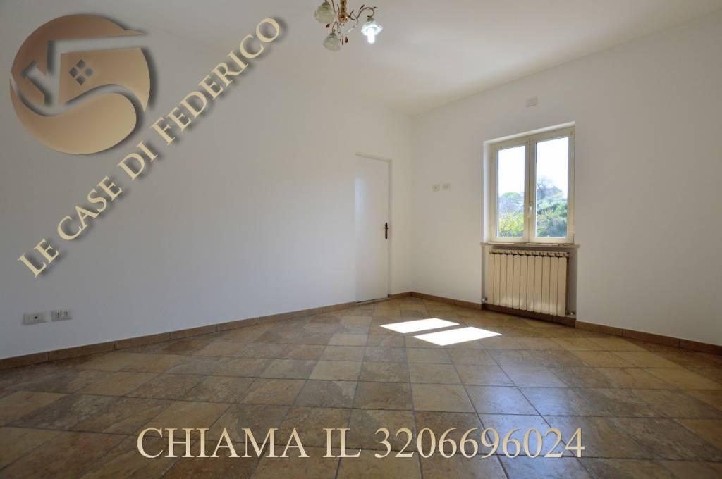 Appartamento in ottime condizioni in affitto Rif. 7759139